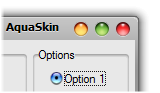 AquaSkin.NET Medium Shadow