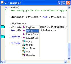 BCGSoft Professional Editor